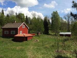 Renovering hytte